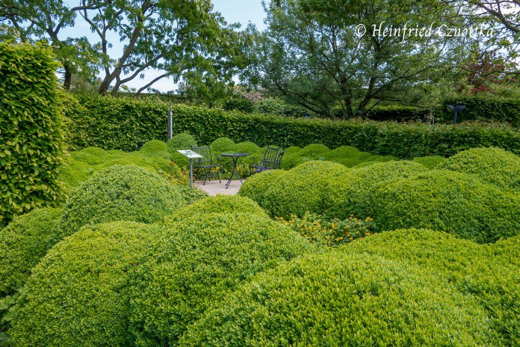 Eine aus Buchsbaum modellierte Landschaft gibt dem Sitzplatz einen Rahmen.