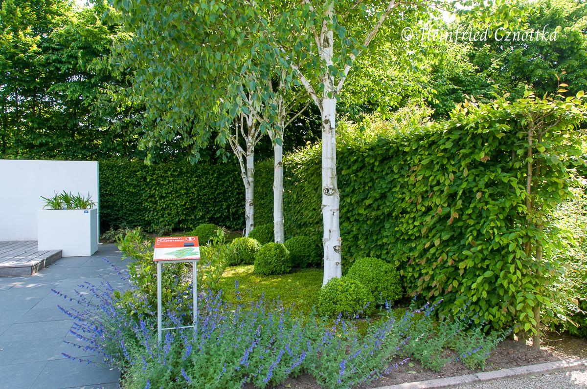 Eine Hecke gibt dem Garten einen schützenden Rahmen.