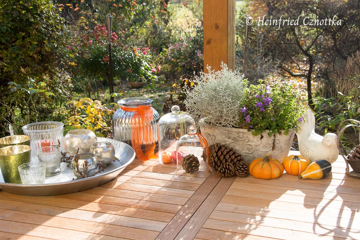 Herbstdeko mit Kürbissen und Zapfen