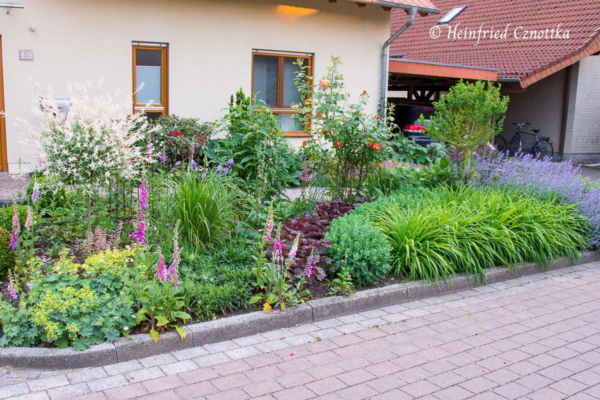 Beet mit Pflanzen in Blöcken und Drifts