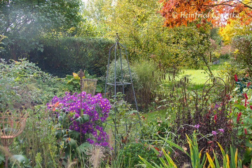 Durchblick in Nachbars Garten