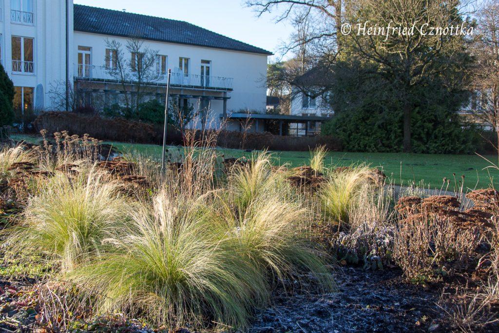 Gartenschau, am Parkhotel Bad Lippspringe, Das Morgenlicht spielt mit den Formen.