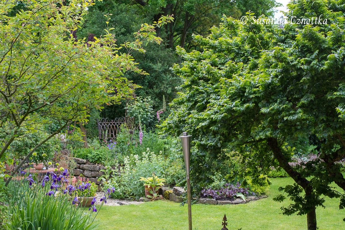 Die Sträucher im Vordergrund verleihen dem Gartenraum eine dritte Dimension.