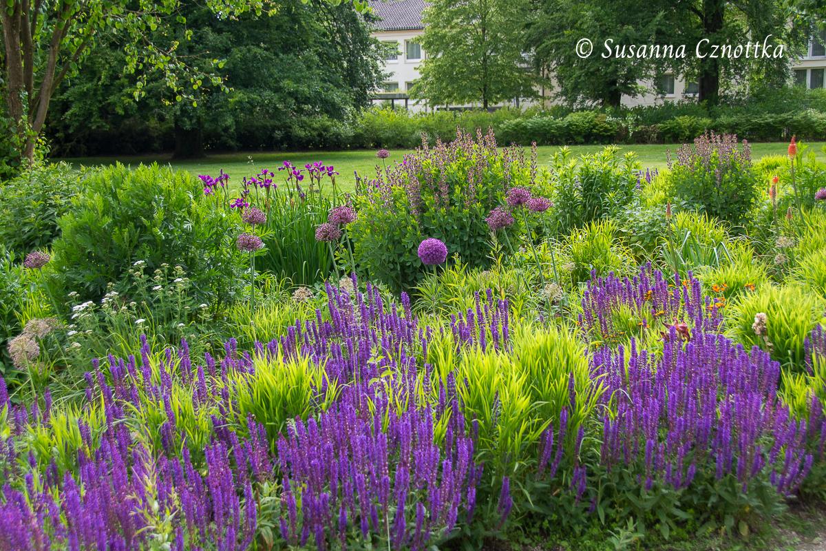 Gartenschau Bad Lippspringe, Lila Zierlauch, Steppensalbei, Iris und Färberhülse inmitten des frisch grünen Austriebs der Gräser