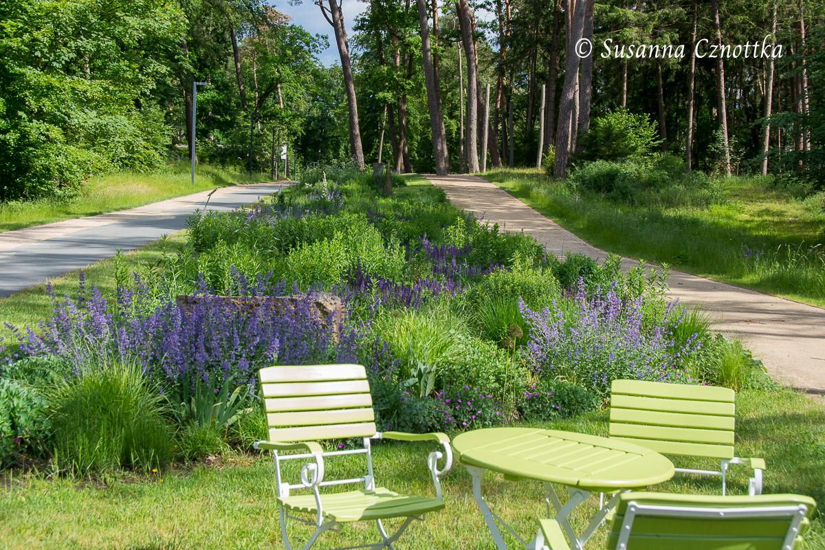 Gartenschau Bad Lippspringe, Der Garten der Gesellschaft der Staudenfreunde