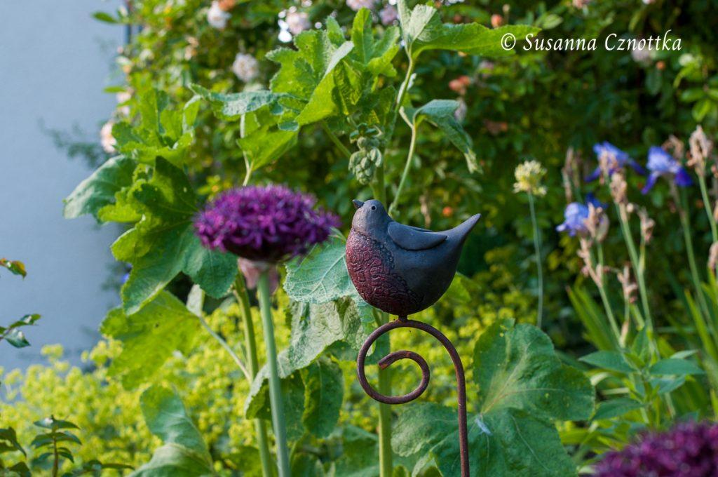 kleiner Vogel, ein Souvenir vom Sussex Prairies Garden