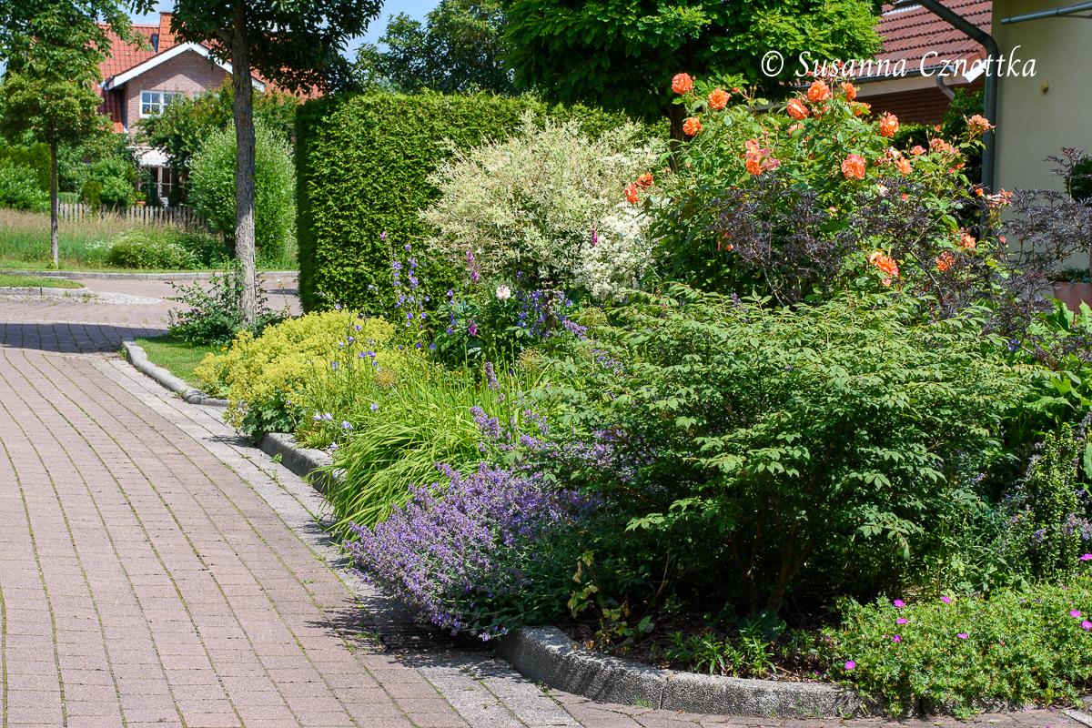 Im Sommer blüht das Beet wochenlang üppig!
