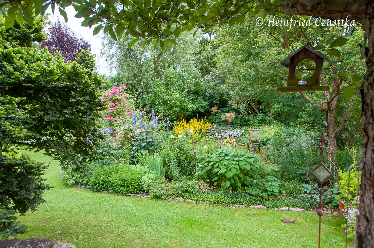 Die Staffelung der Gehölze gibt dem Garten räumliche Wirkung.