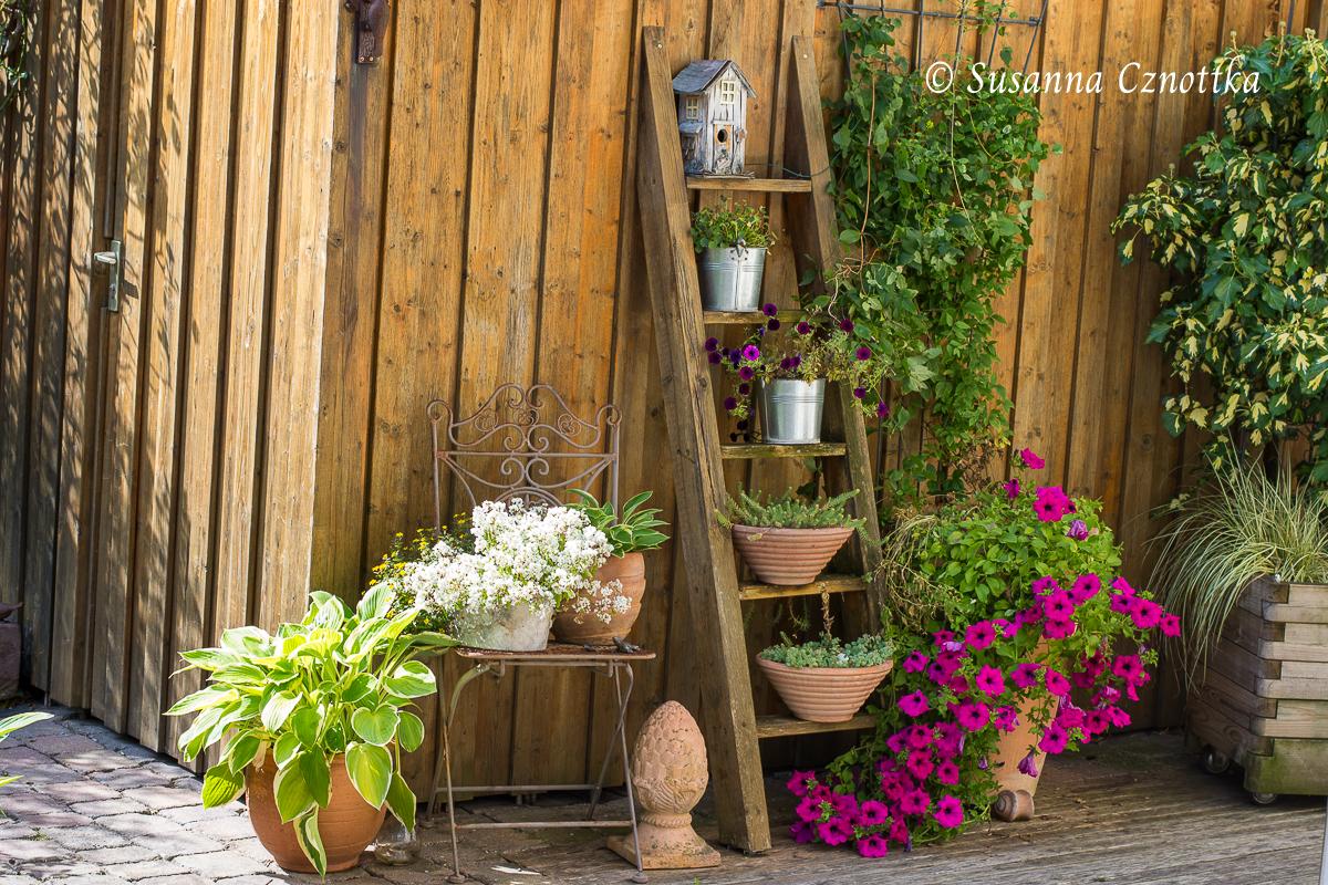 Die Blumenleiter im Sommer