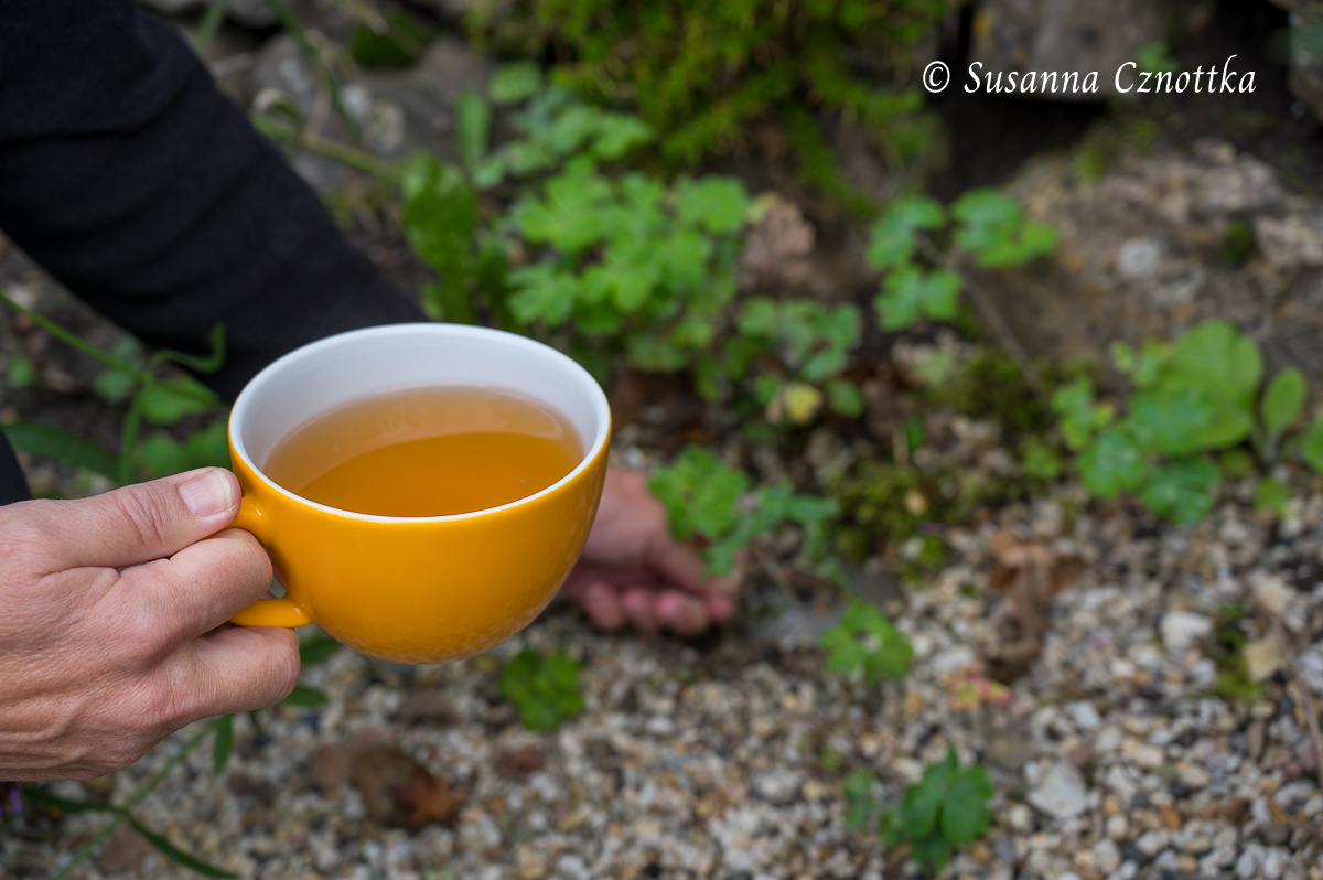 In einer Hand die Teetasse, mit der anderen Hand wird Unkraut gezupft