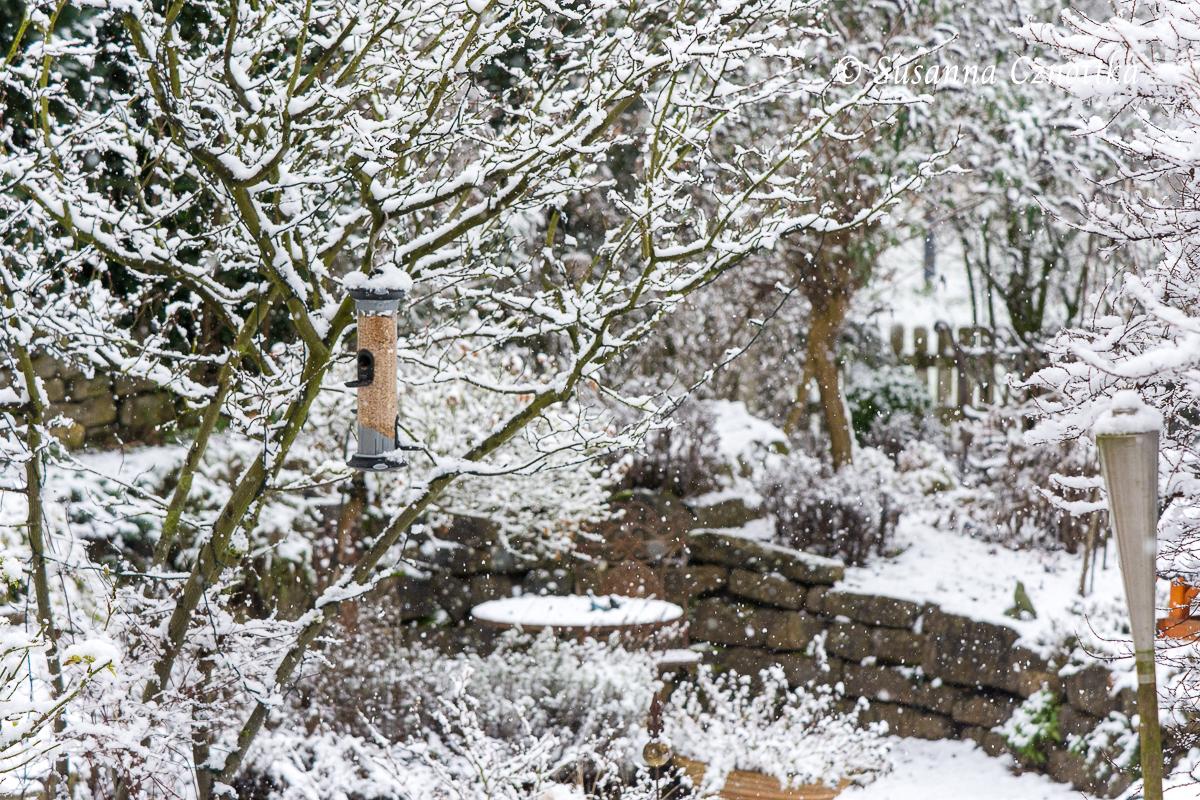 Schneeflocken tanzen in einem Garten.