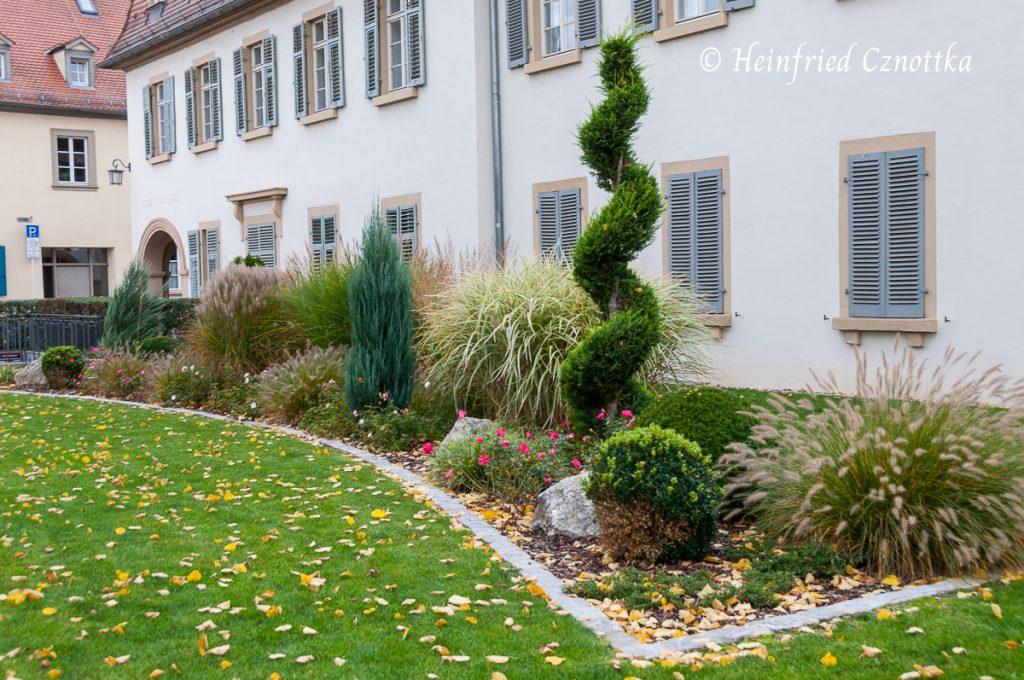 Eine klar strukturierte Pflanzung mit immergrünen Gehölzen und Gräsern