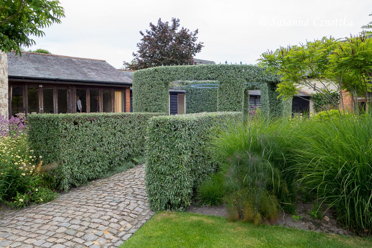 Ein Pavillon aus Weidenblättriger Birne (Pyrus salicifolia)