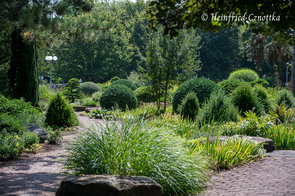 Formschnittgehölze und Gräser in vielen Grünschattierungen. Wozu braucht man da noch Blüten? (Westfalenpark Dortmund)