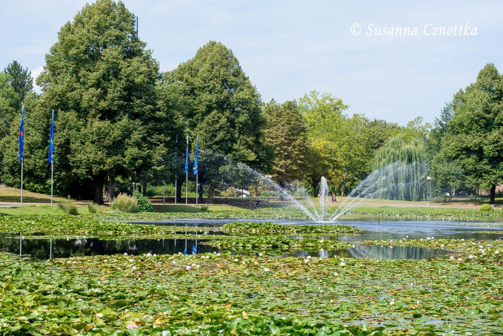Der Seerosenteich mit Springbrunnen