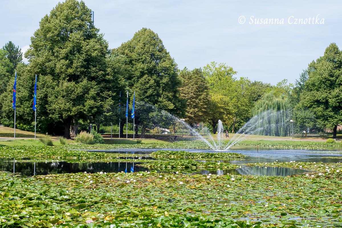 Seerosenteich mit Springbrunnen (Westfalenpark Dortmund)