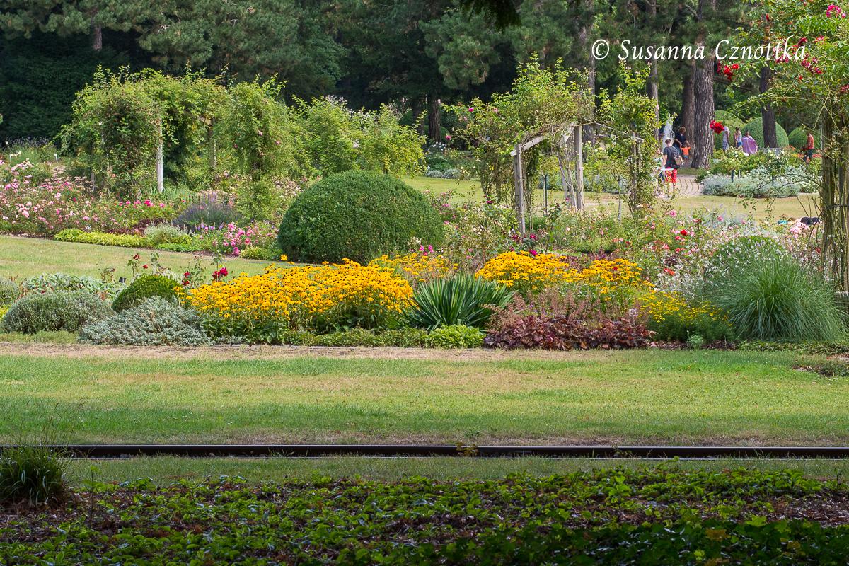 Eine gelungene Form- und Farbkomposition (Westfalenpark Dortmund)