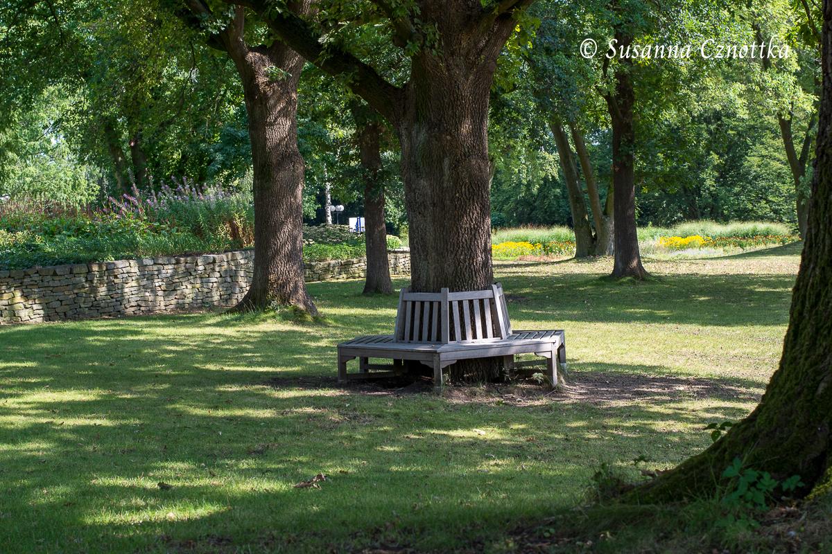 Einladende Baumbank im Schatten (Westfalenpark Dortmund)