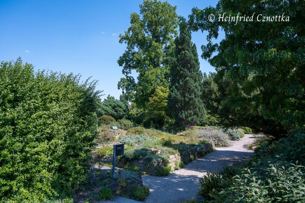 Steingarten, Berggarten Hannover