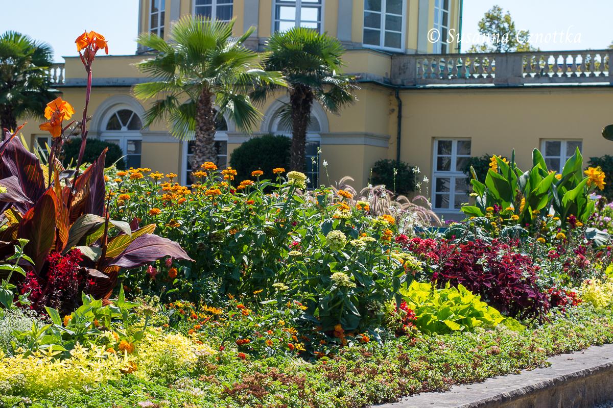 Exotischer Sommerflor im Schmuckhof (Berggarten Hannover)