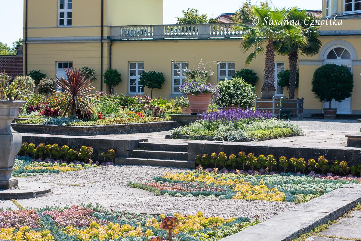 Ein Mosaik aus sukkulenten Pflanzen in einem Senkgarten (Berggarten Hannover)