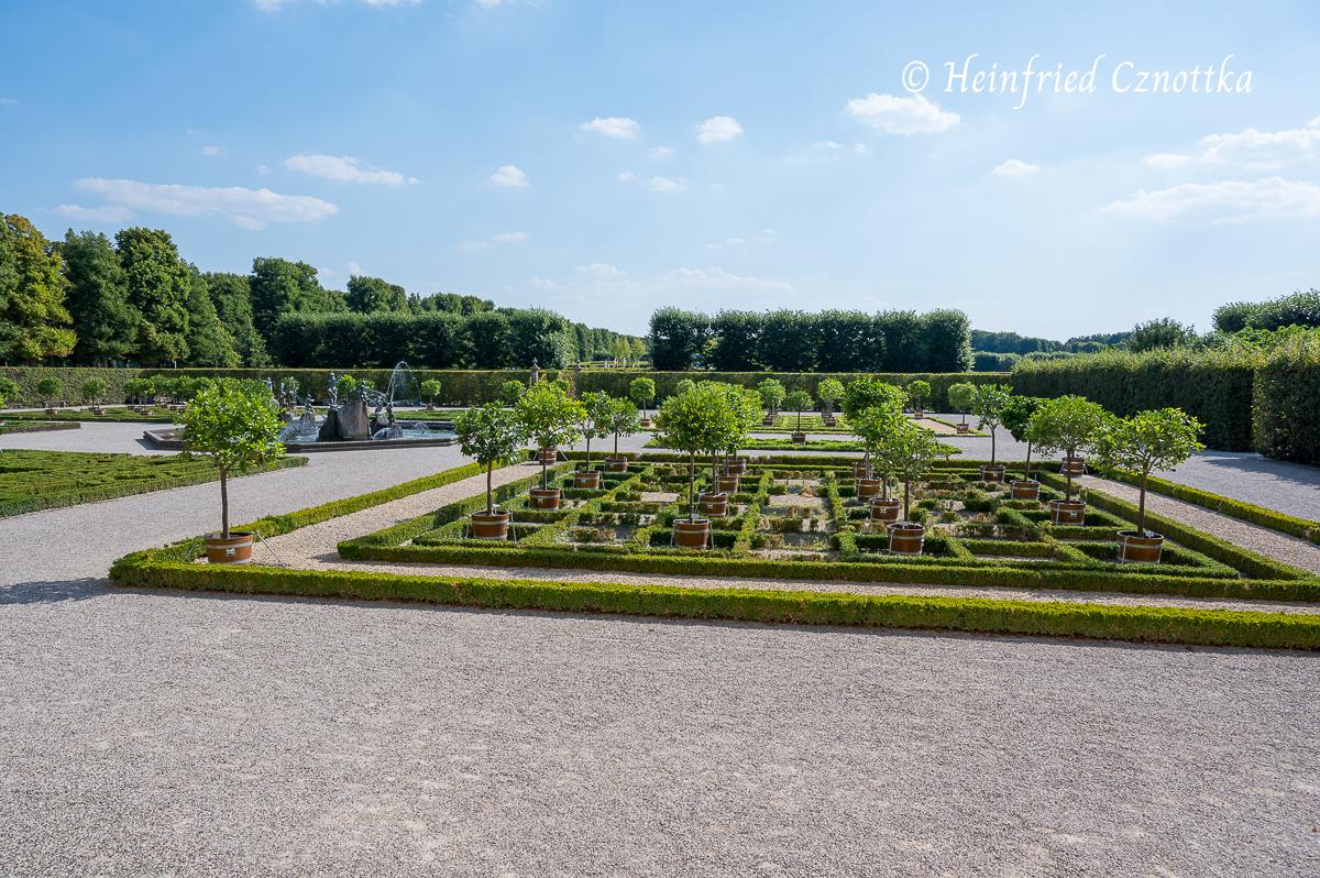 Zitruspflanzen in Kübeln im Orangengarten (Herrenhäuser Gärten, Hannover)