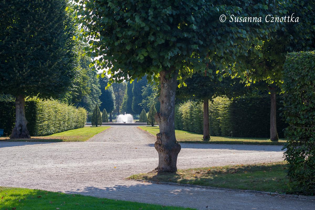 Blick auf eine der kleineren Fontänen, die von Hainbuchenkegeln in Szene gesetzt wird (Herrenhäuser Gärten, Hannover)