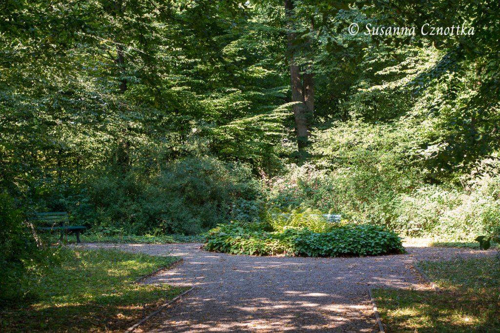 Im Boskettgarten ist es angenehm schattig.
