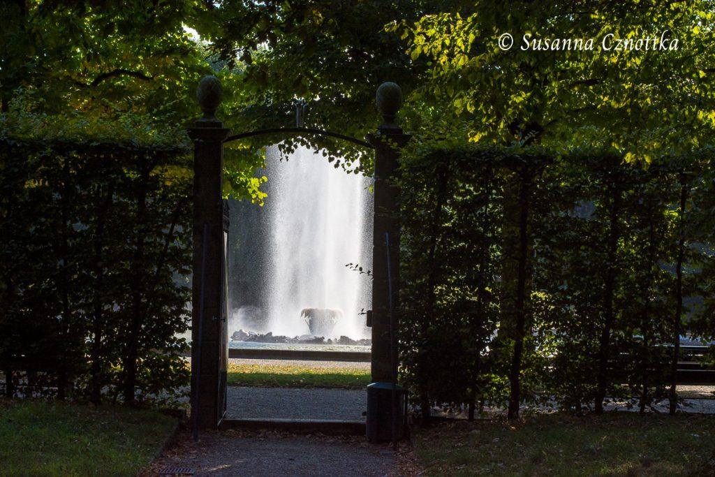 Blick aus einem der Boskettgärten auf die große Fontäne