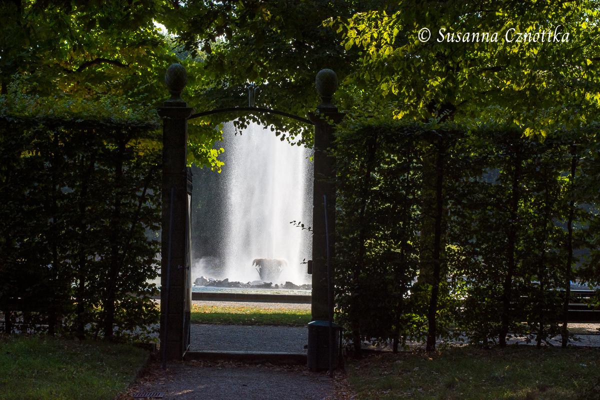 Blick aus einem der Boskettgärten auf die große Fontäne (Herrenhäuser Gärten, Hannover)