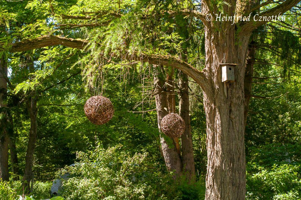 Staudengärtnerei Gaißmayer, Stimmungsvoller Waldgartenbereich