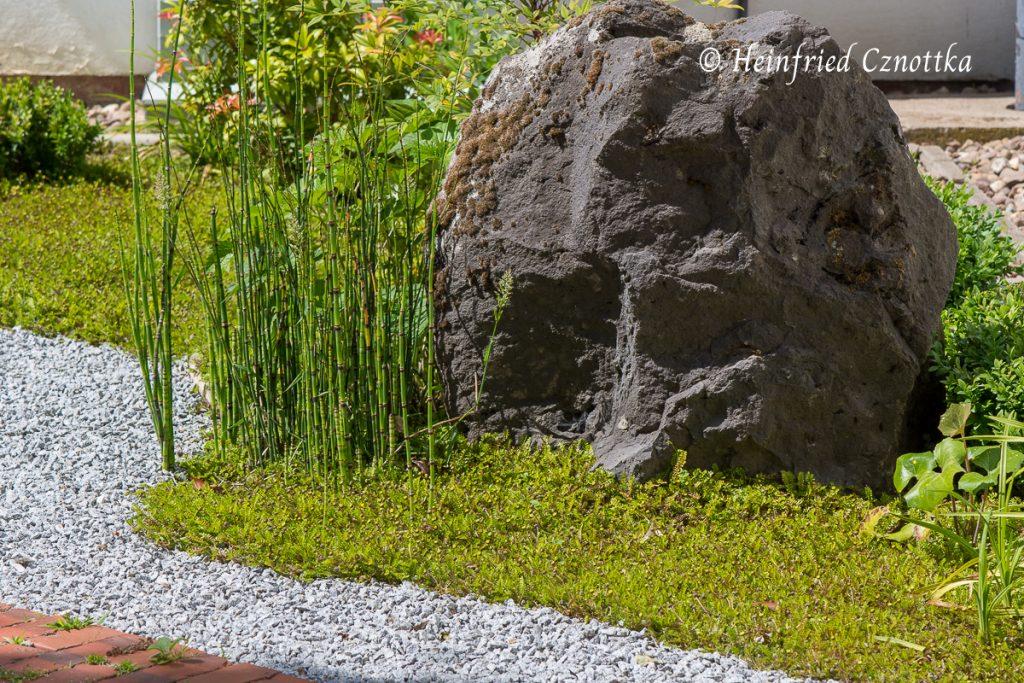 Japanischer Garten Bielefeld, Anstelle von Moos wurde im  Fiederpolster (Cotula) als Bodendecker verwendet.