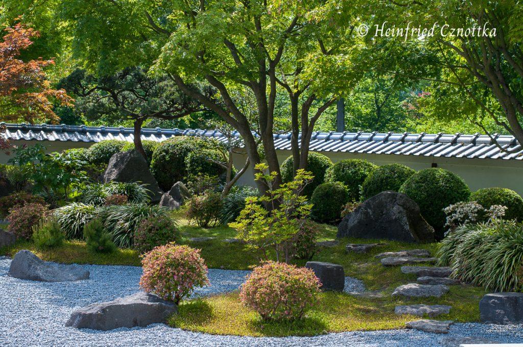 Japanischer Garten Bielefeld, die Trittsteine lenken das Auge des Betrachters.