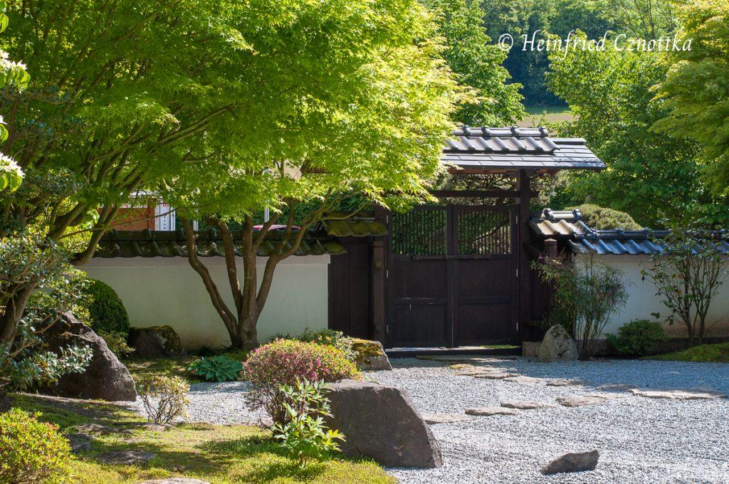 Japanischer Garten Bielefeld, geborgte Landschaft: der Teutoburger Wald