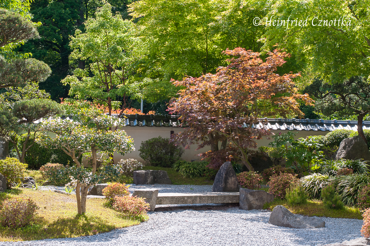 Japanischer Garten Bielefeld, ein meditativer Ort