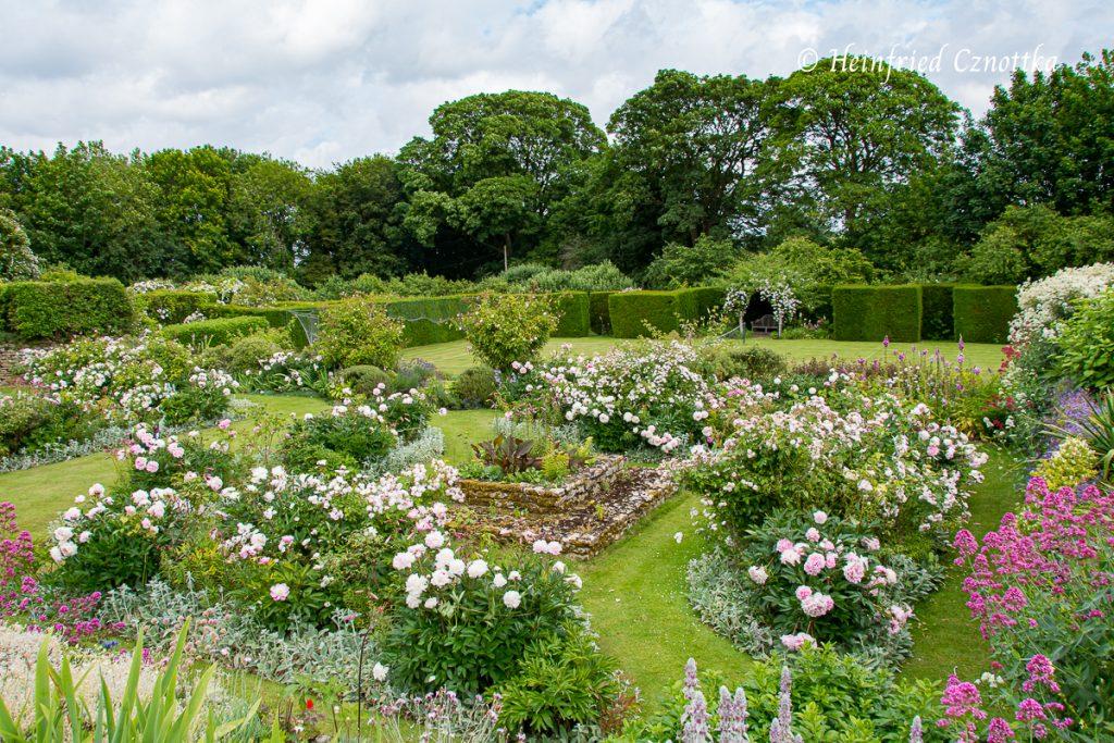 Detail eines symmetrischen Rosengartens