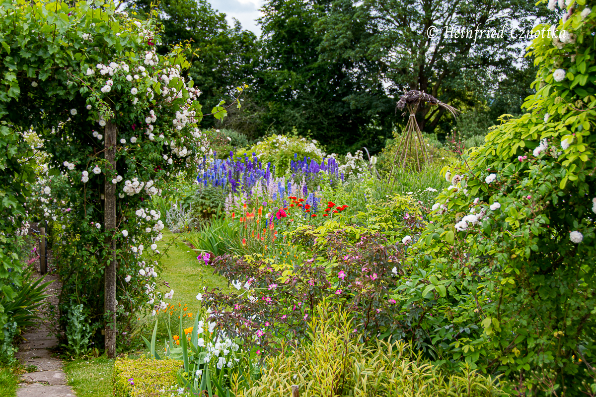 Gartenbild mit Rittersporn, Brennender Liebe, Fackellilie und Rosen