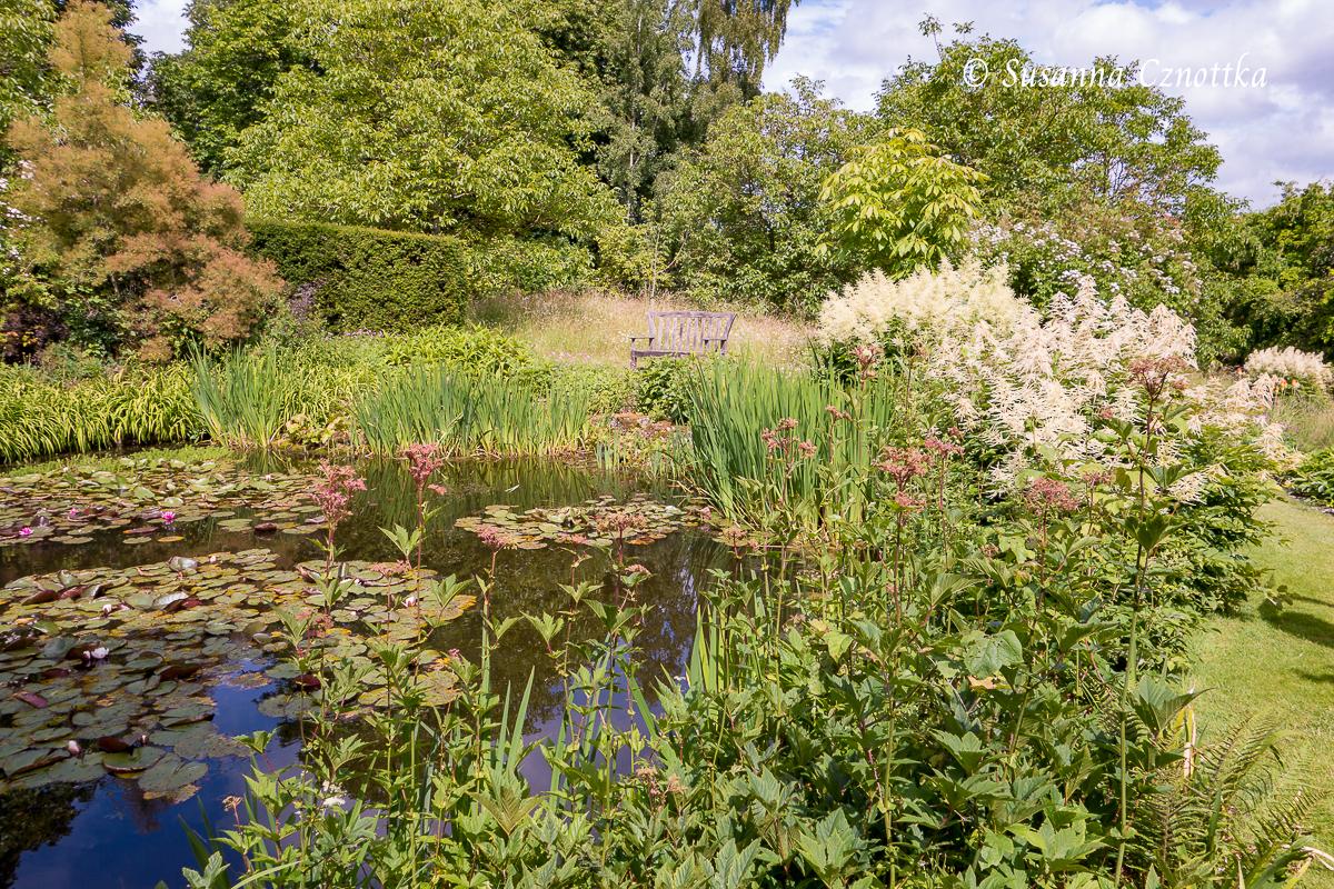 Malerischer Teich mit Holzbank