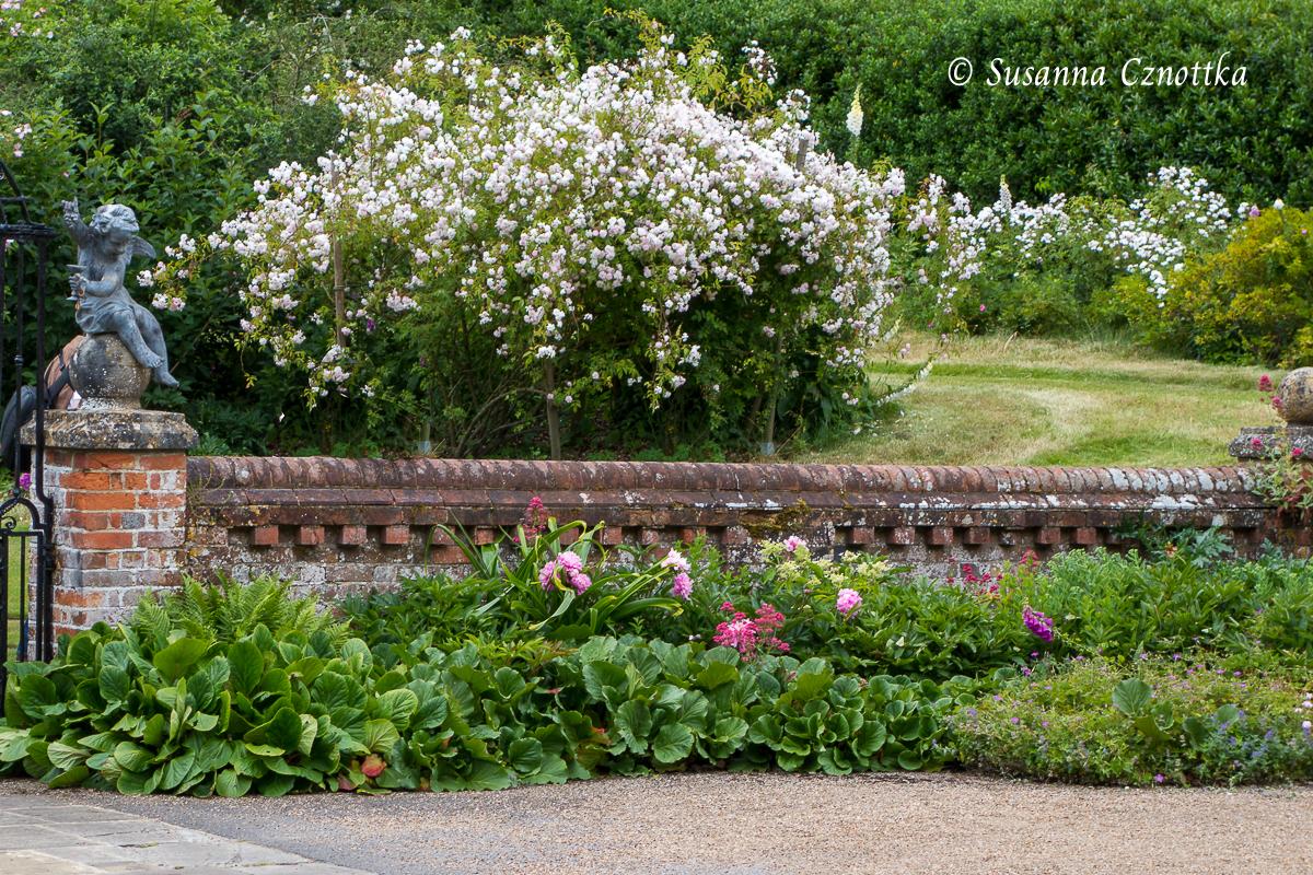 Gartenmauer und Staudenbeet