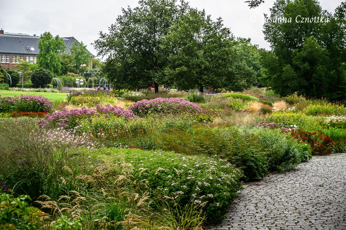 Sonniges Beet (Oudolf-Pflanzung in Hamm)