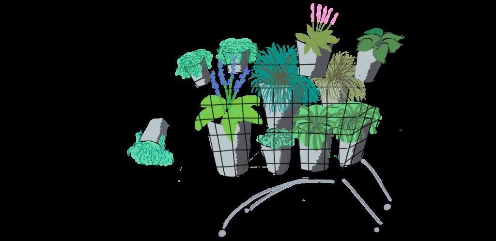 Überfüllter Einkaufswagen beim Pflanzenkauf