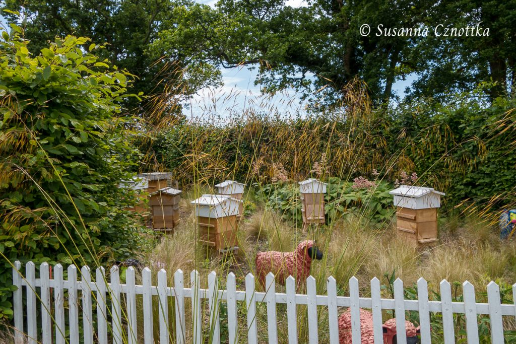 Sussex Prairies Garden, Bienengarten, rosa Schafe