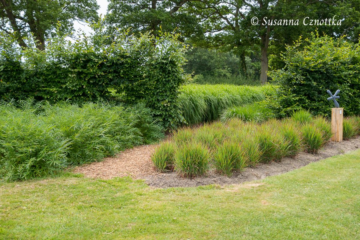 Sussex Prairies Garden, eine Pflanzung auch ohne Blüten  schön